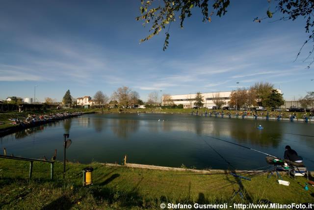 Il laghetto dei tigli di via triboniano uno scempio for Lago per tartarughe